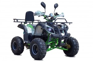 QUAD 125 ATV BS-MODEL N PREMIUM